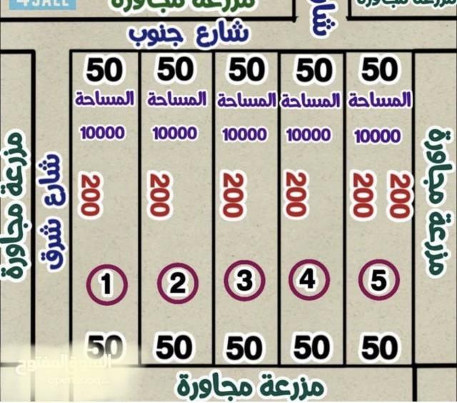 مزارع للبيع بالوافرة طريق 500 تفتح شرق واجهة 50*200