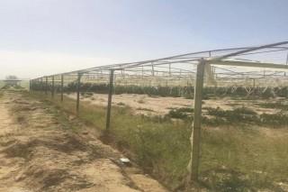 محميات زراعية للبيع