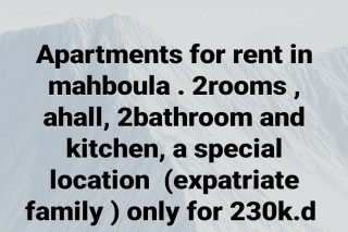 apartment 4 rent